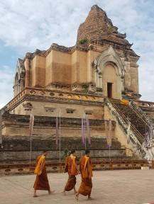 Wat Chedi Luang, old town CM