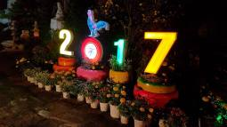 2017, year of the Rooster