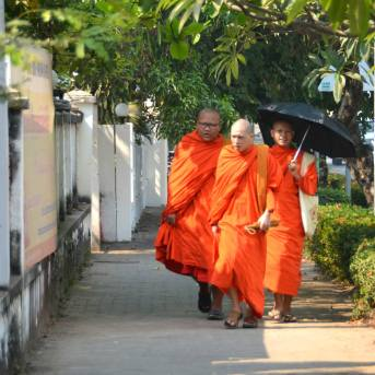 Monks in the street