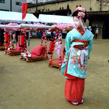 Geisha to be